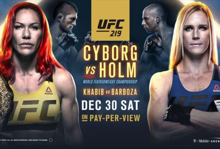 UFC 219 Daily Fantasy Picks