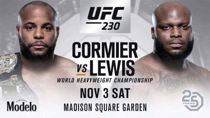 UFC 230 Daily Fantasy Picks